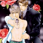 Yaoi: The Art of Japanese Gay Comics